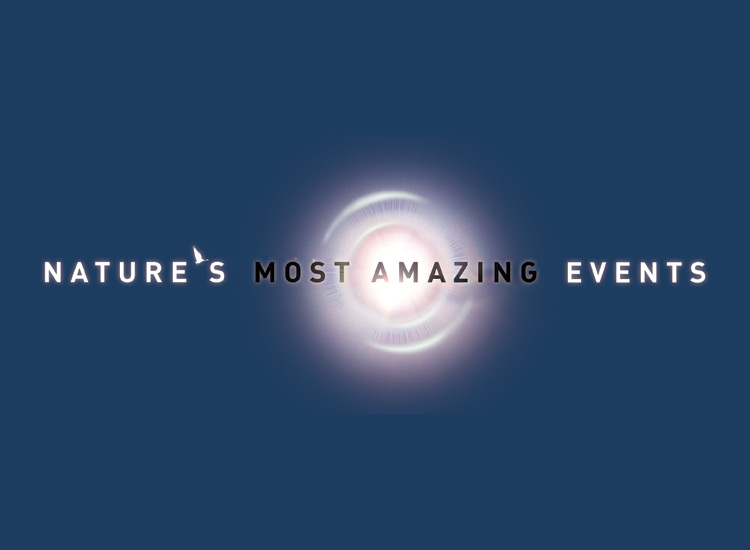 Nature's Most Amazing Event